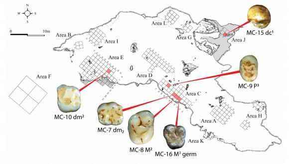 six human teeth found in Manot Cave