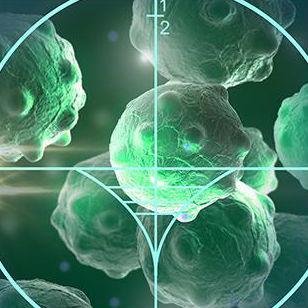 cancer cells target