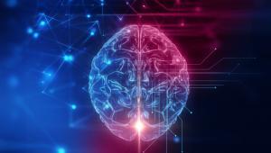 Modeling Sporadic Parkinson's Disease