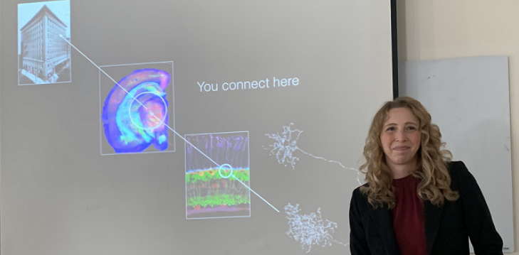Dec. 31, 2019 Dr. Melanie Samuel presents How to build a synapse: molecules that instruct form and function