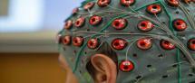 Sagol School of Neuroscience