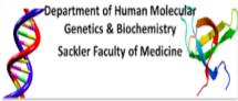 human molecular genetics