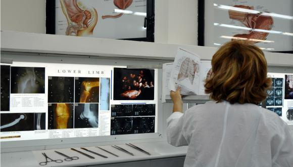 research on human anatomy and human biology