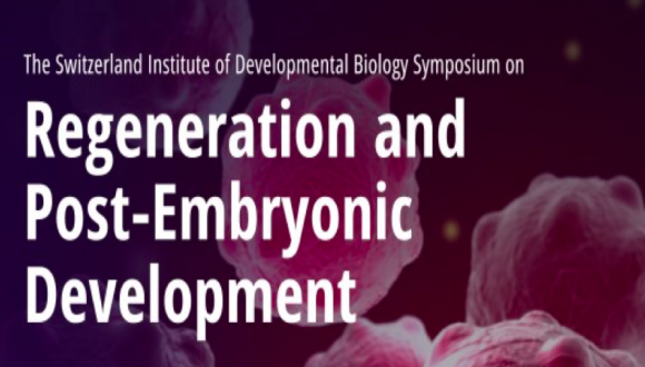 Regeneration and Post - Embryonic Development