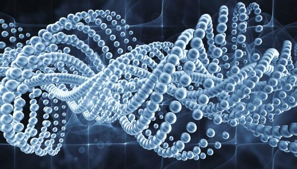 DNA biobank