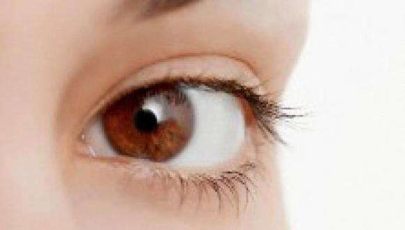 eye physiology